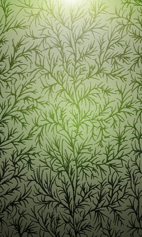 трава зеленая (водоросли)