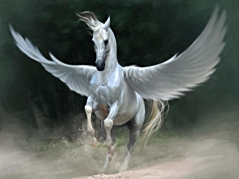 картинки лошади пегасы