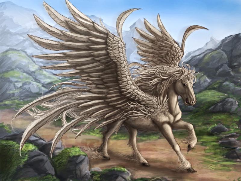 крылья пегас